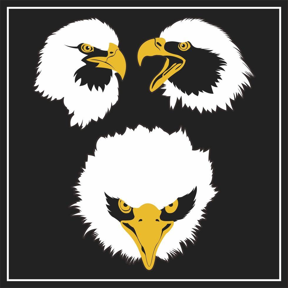 ensemble tête d'aigle vecteur