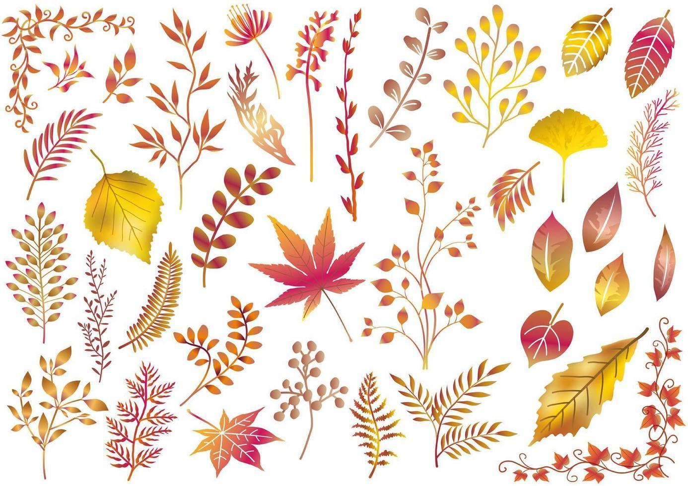 conjunto de elementos de otoño con temas dorados vector