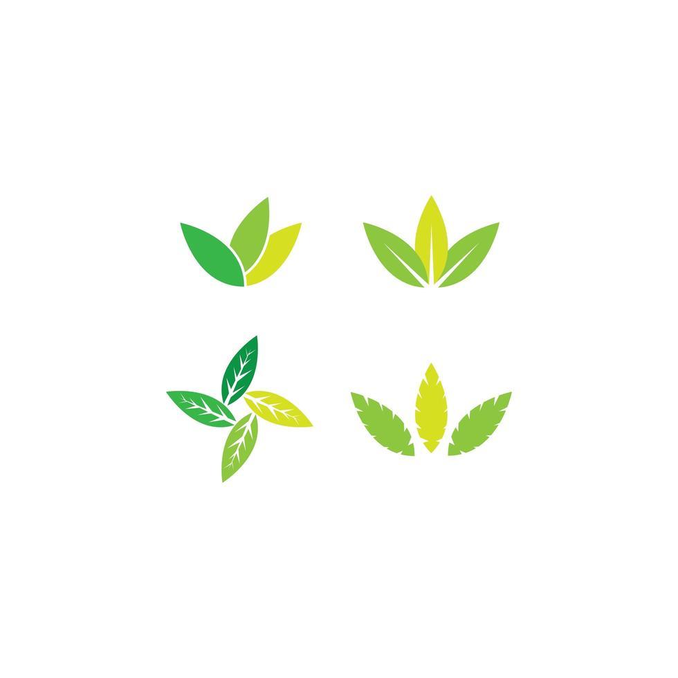 conjunto de iconos de hoja de árbol vector