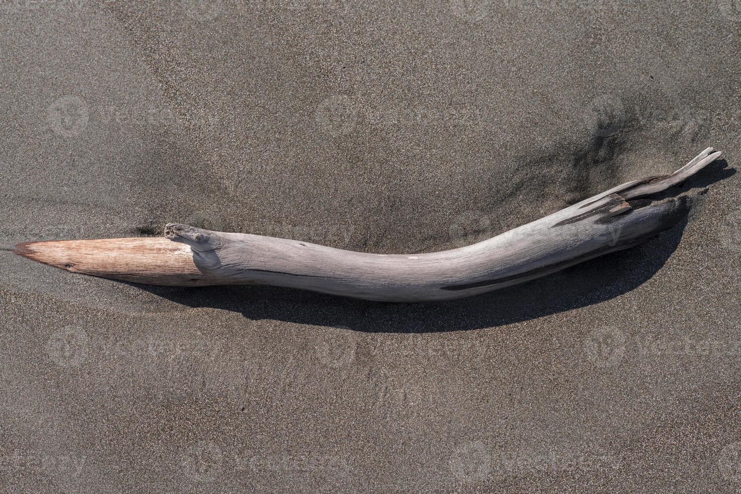 Driftwood Close Up photo