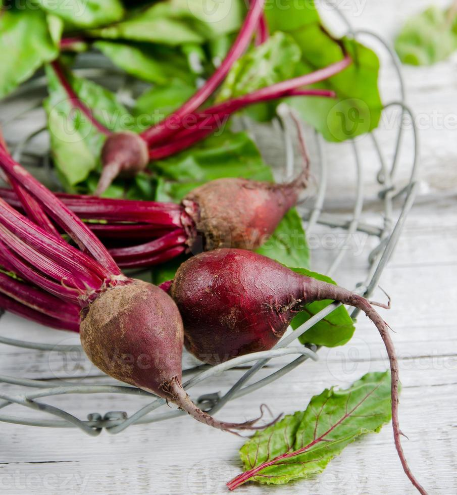 Young, fresh organic beets with green leaves photo