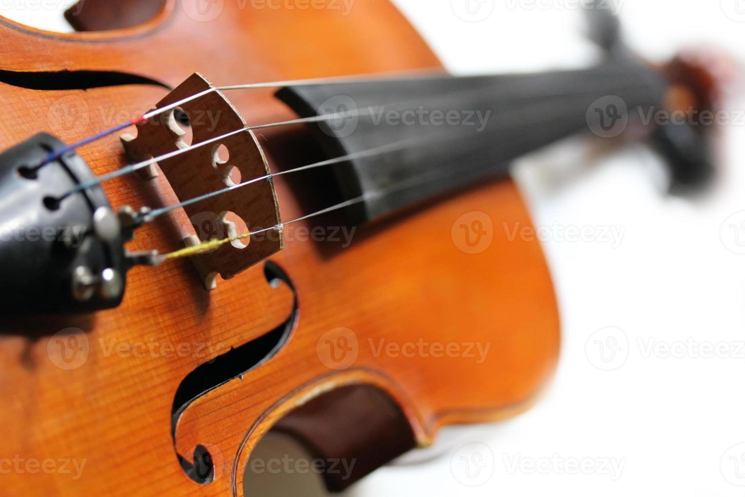 Close up of violin photo
