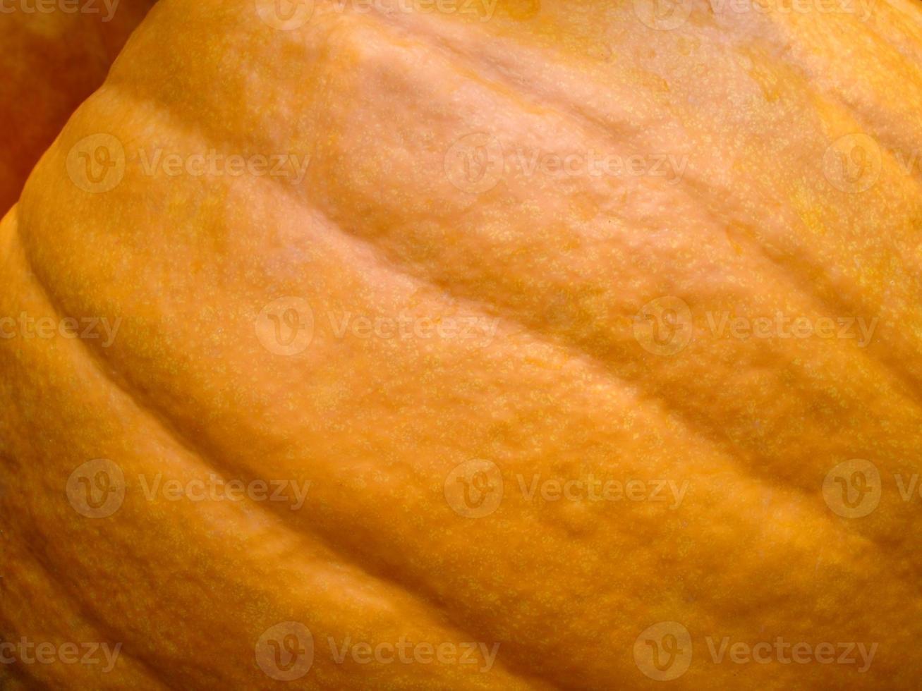 Pumpkin Close Up Background photo