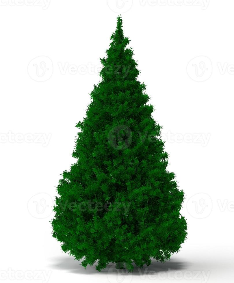 xmass tree photo