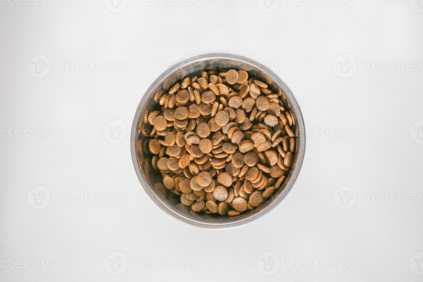 Bowl of dog food photo