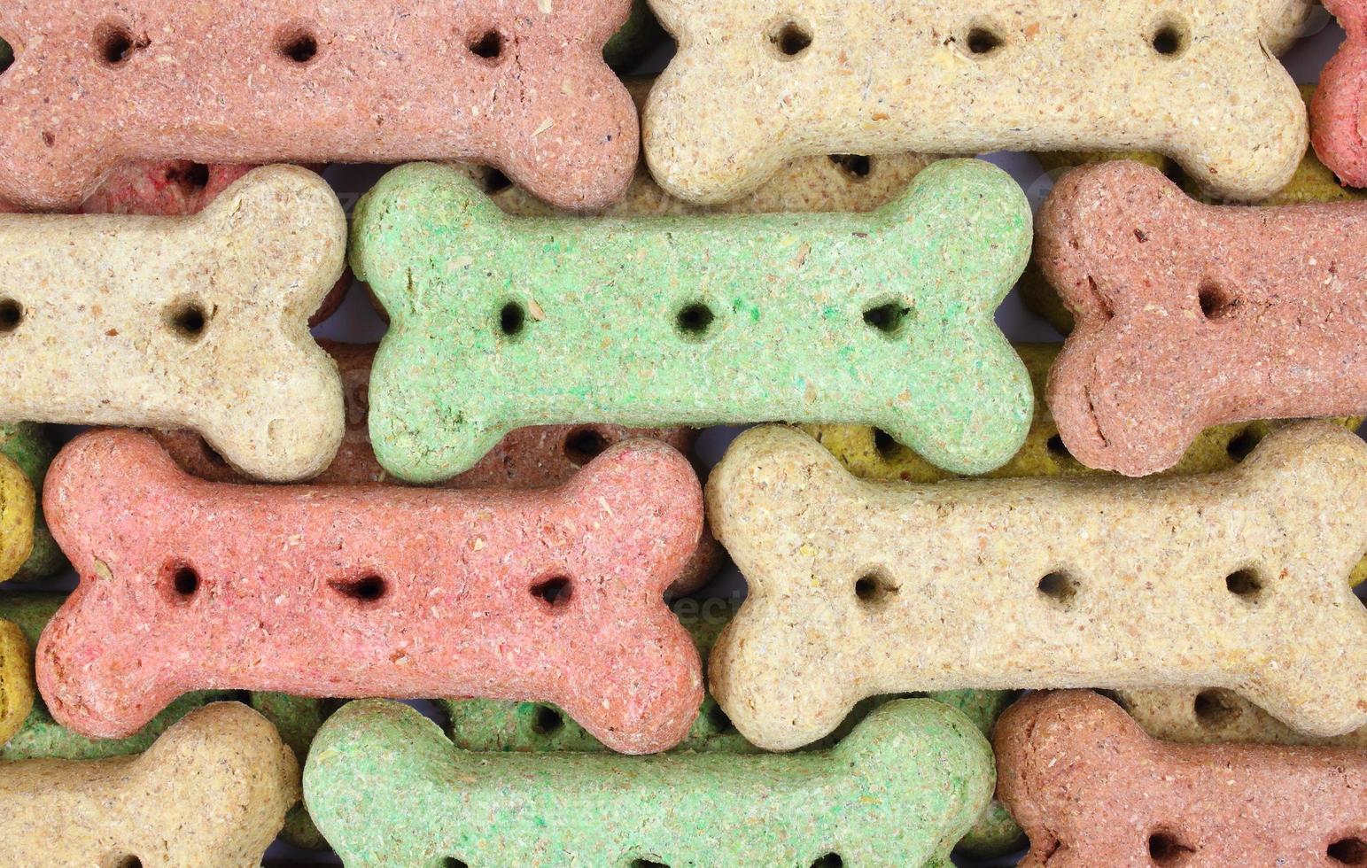 hileras de galletas para perros foto