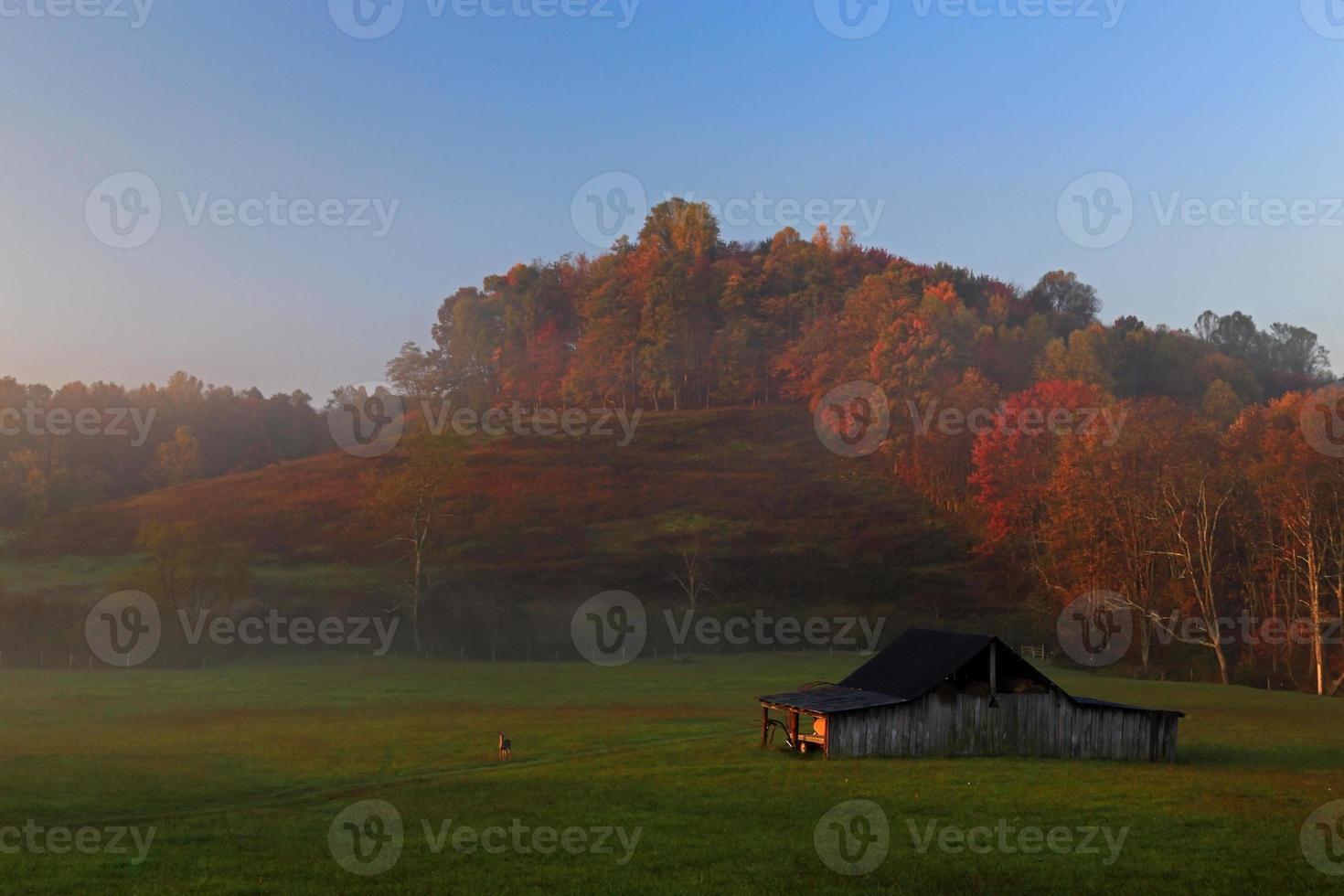 amanecer en virginia occidental con ciervos y colores otoñales foto