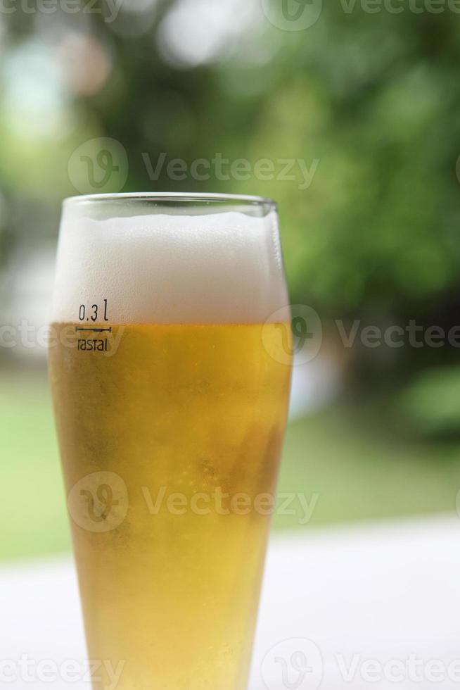 cerveza foto