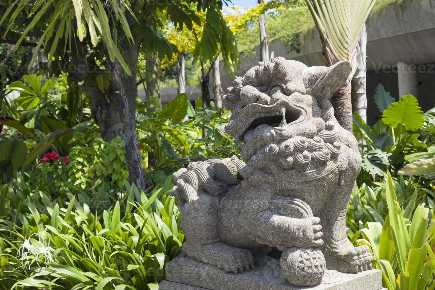león de piedra chino foto