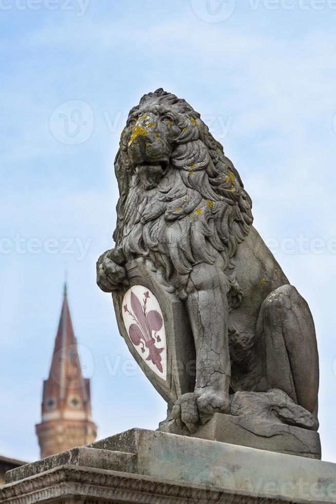 león heráldico marzocco - el león florentino foto