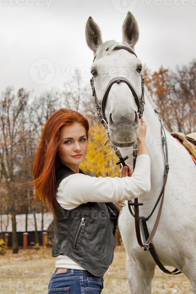 amor por los caballos foto