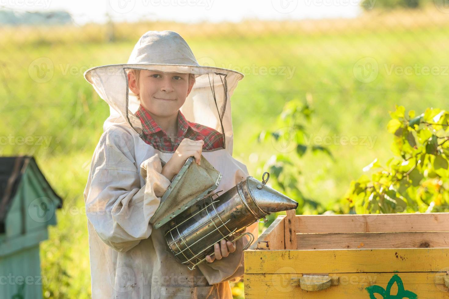 Young beekeeper working in apiary photo