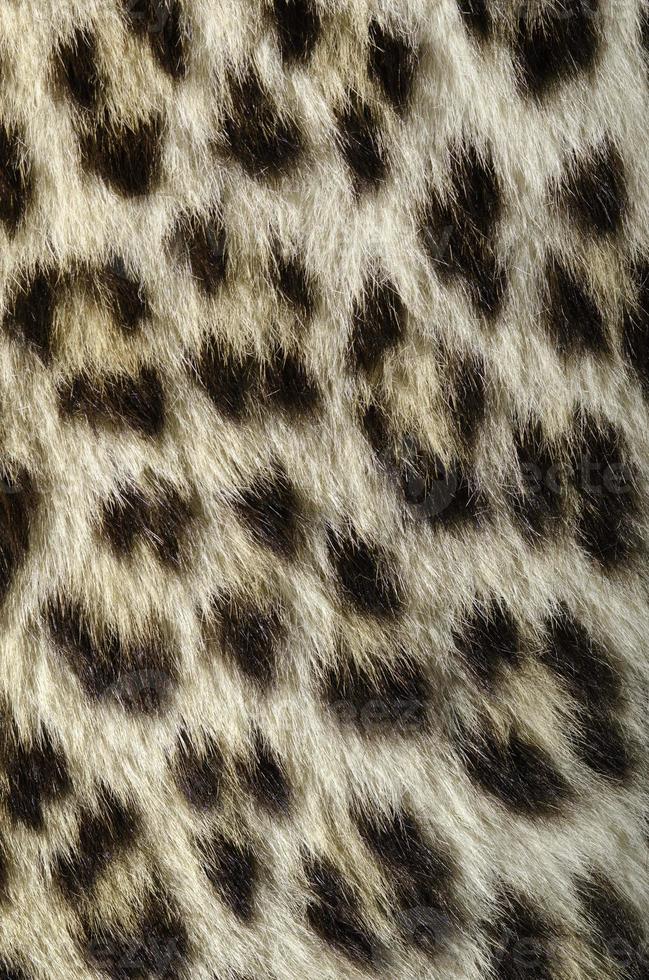 primer plano de piel de leopardo foto