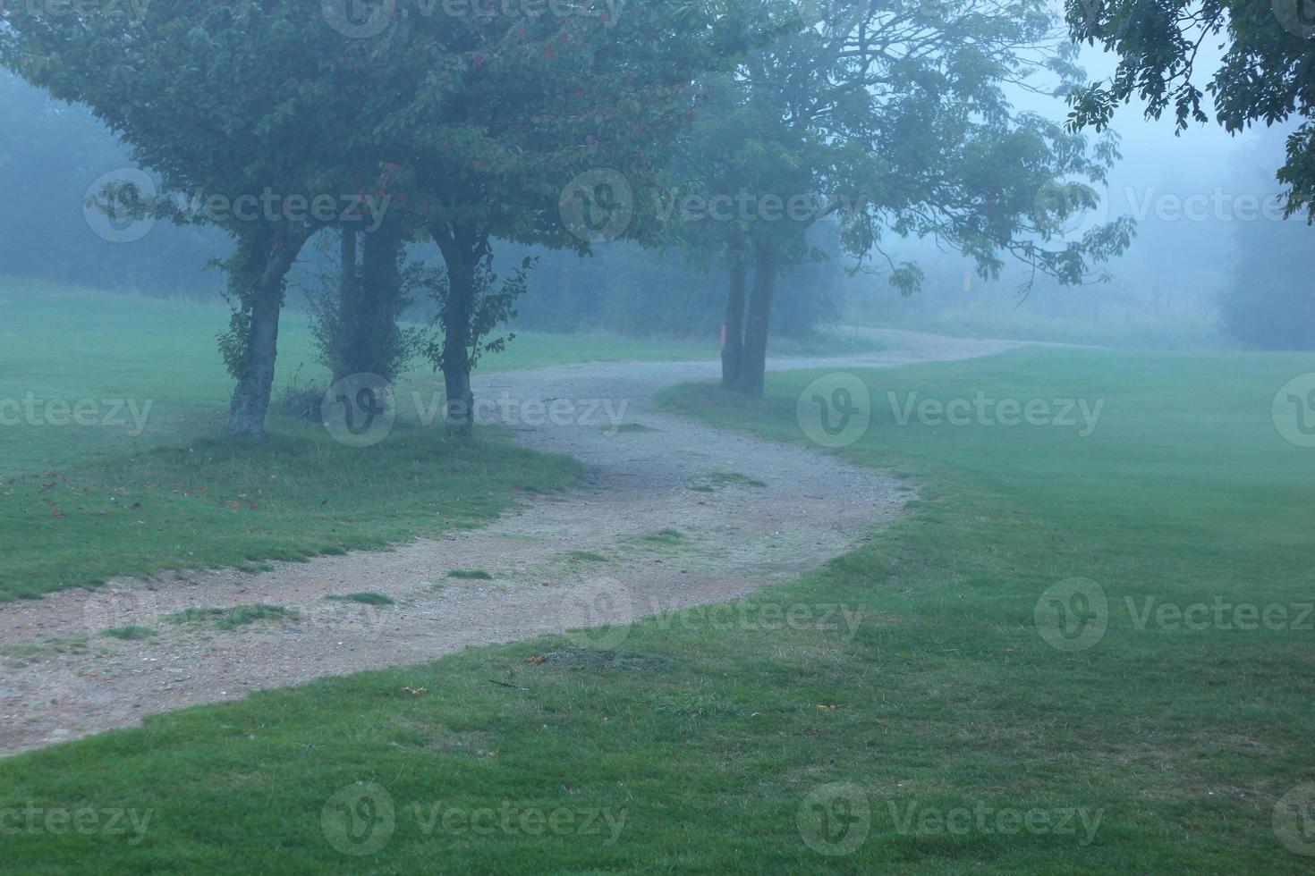 serpenteante camino brumoso foto