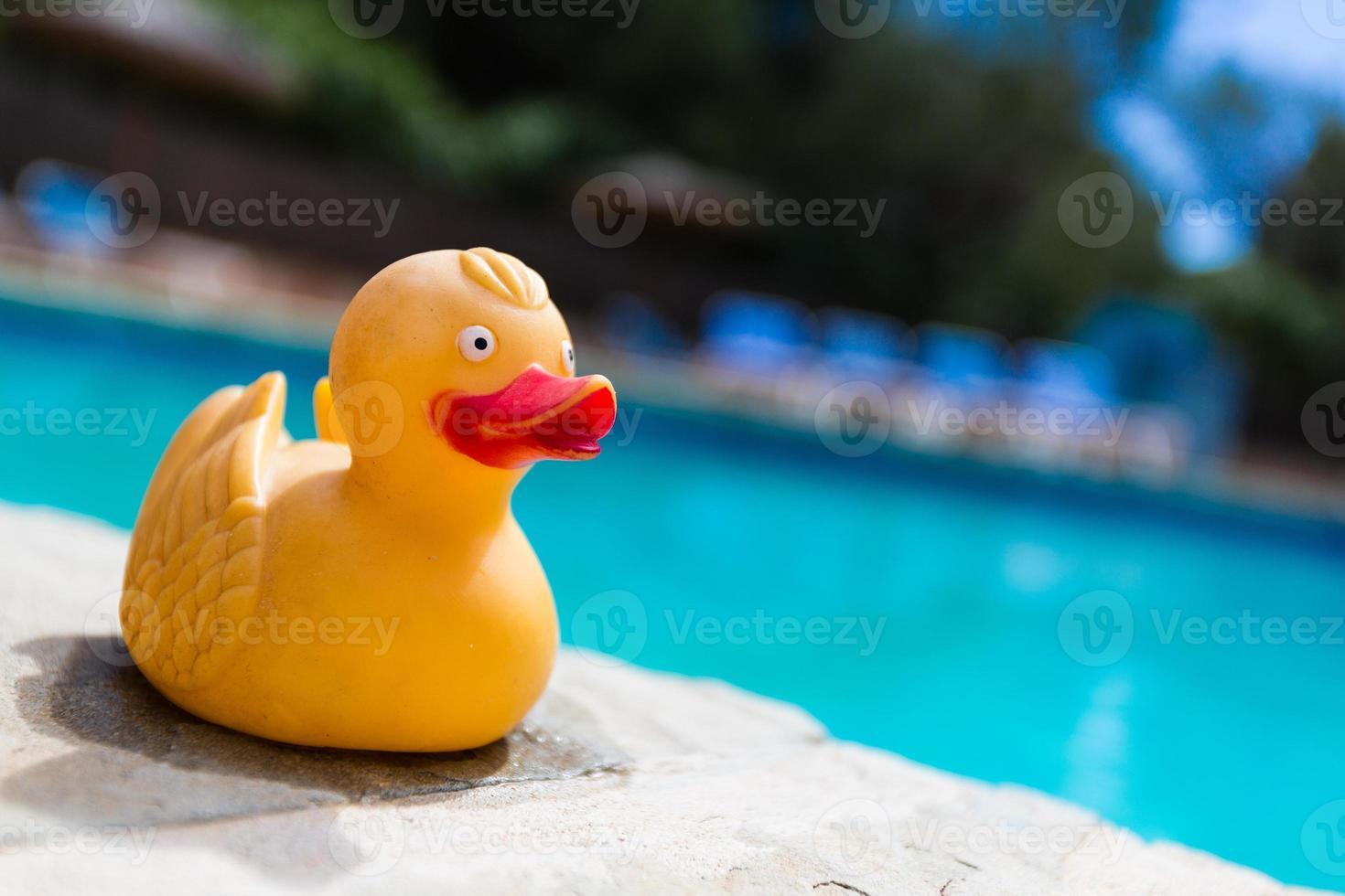 pato de goma amarillo foto