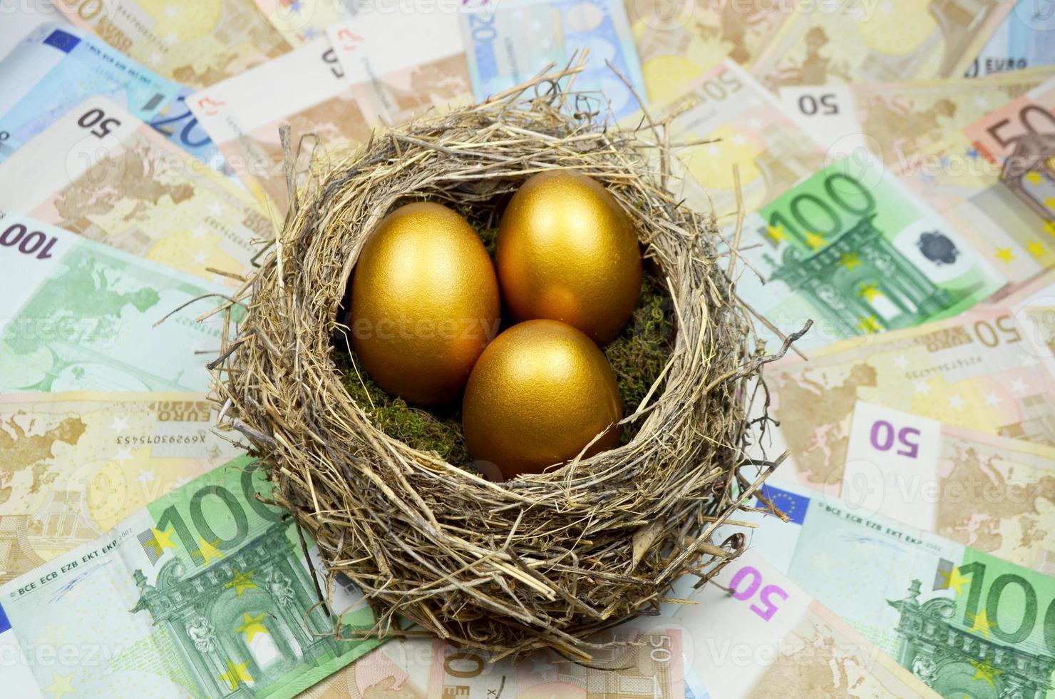 Golden nest egg photo