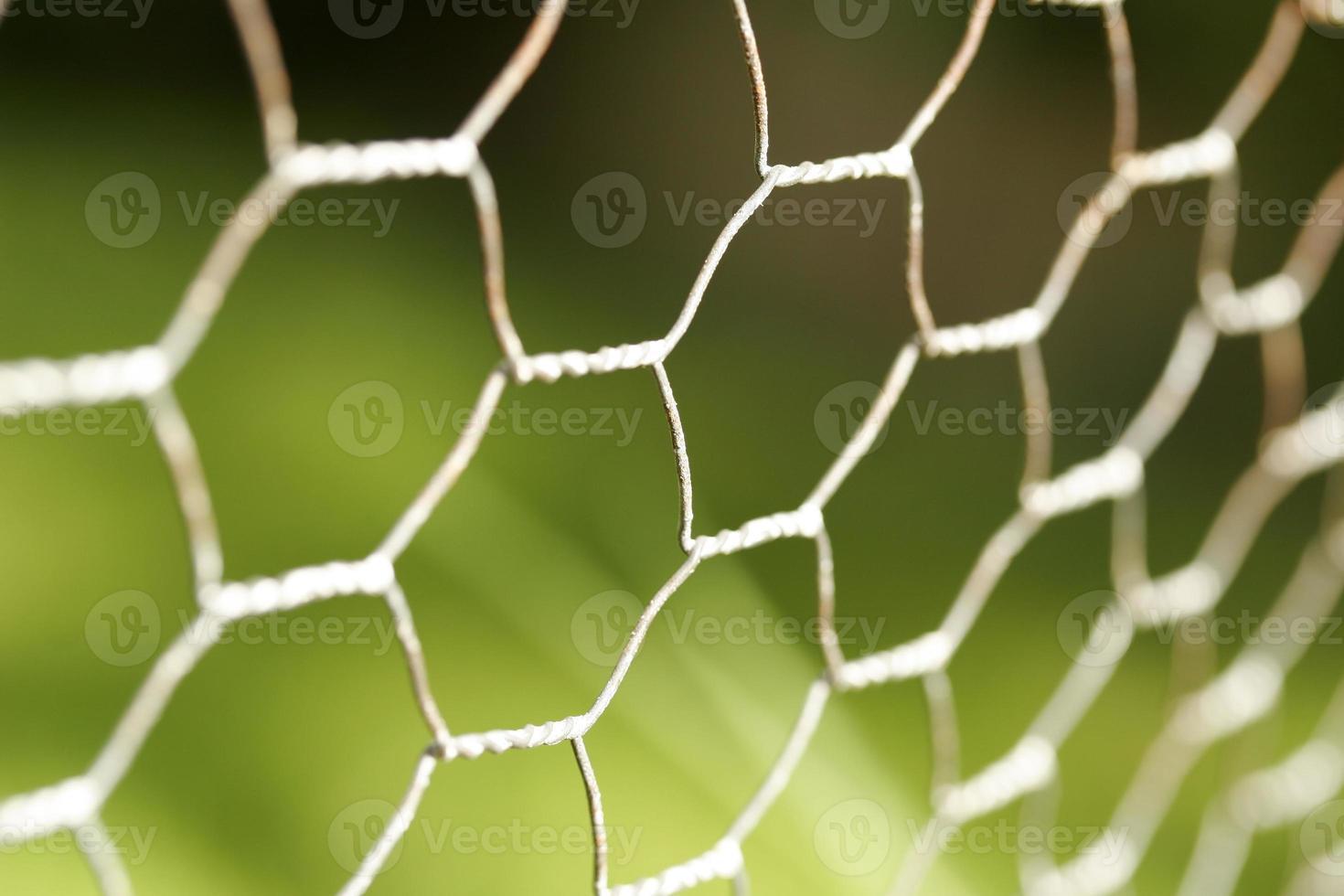 Chicken wire close up photo