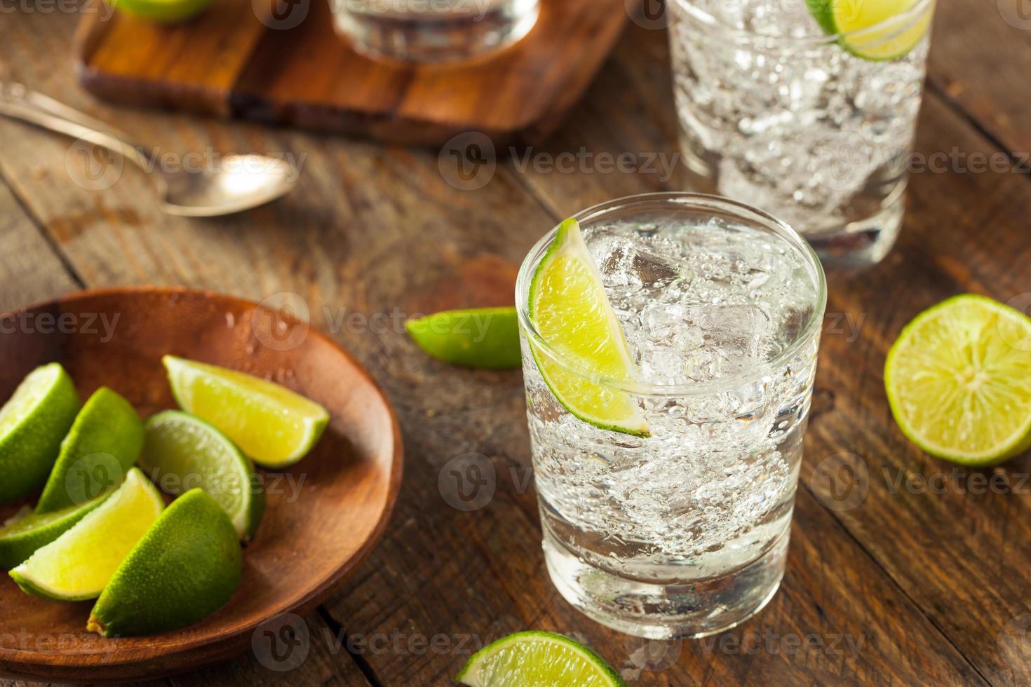 gin tonic alcohólico foto