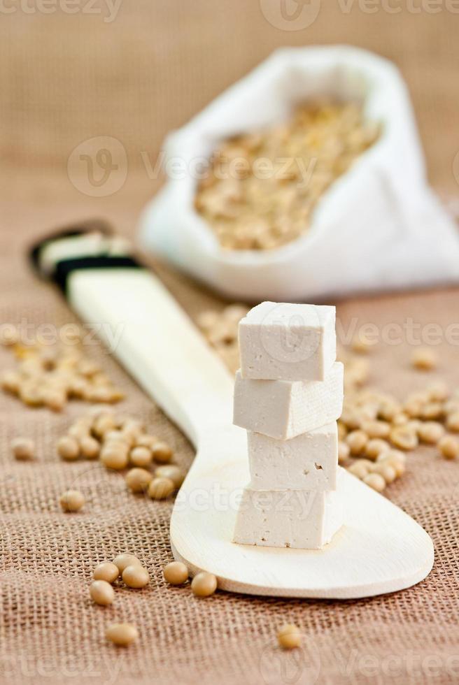 frijoles de soya y tofu foto