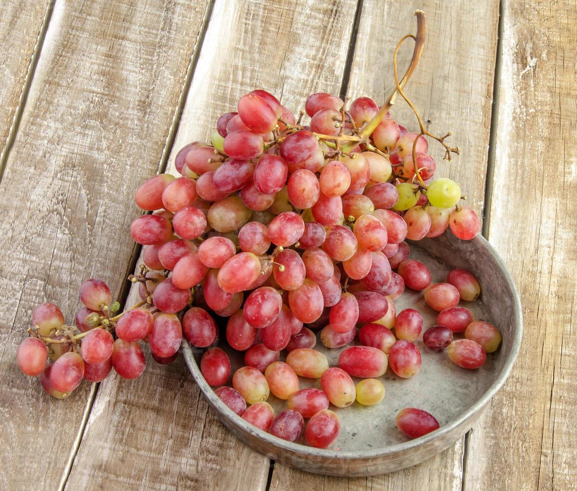 racimo de uvas rojas foto