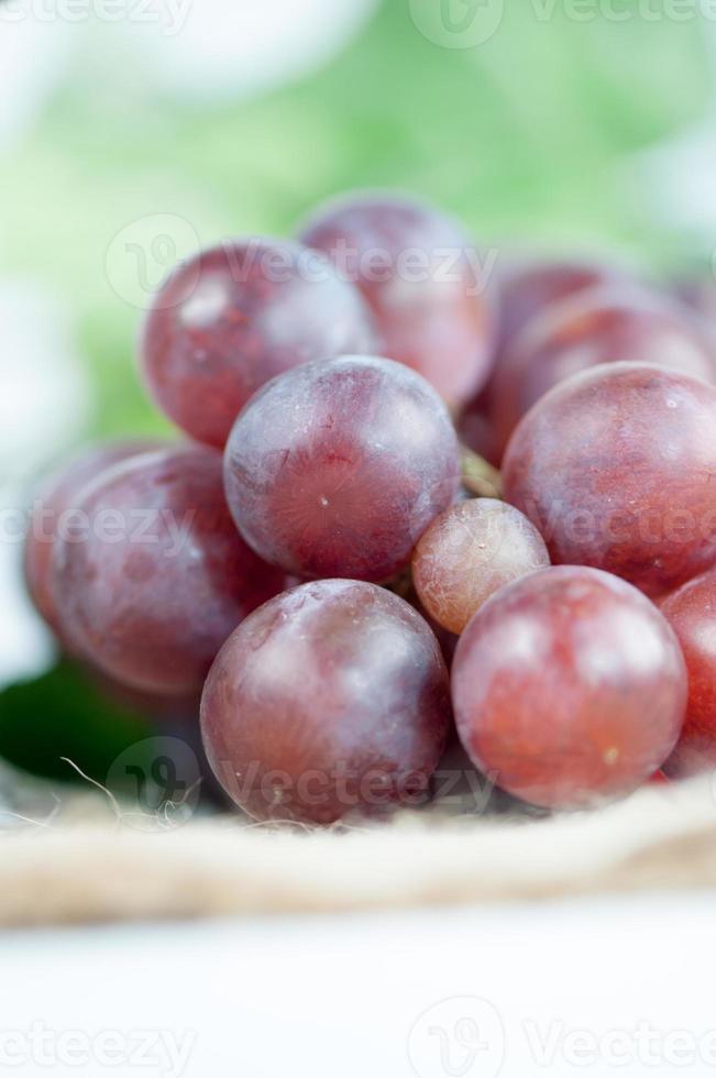 red grape photo