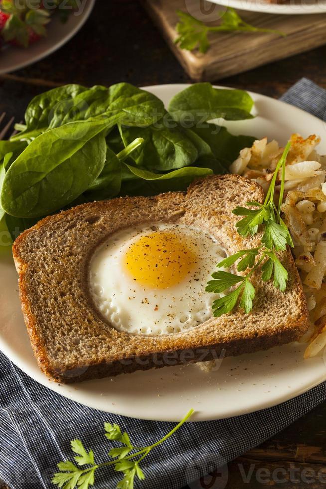 huevo en una canasta foto