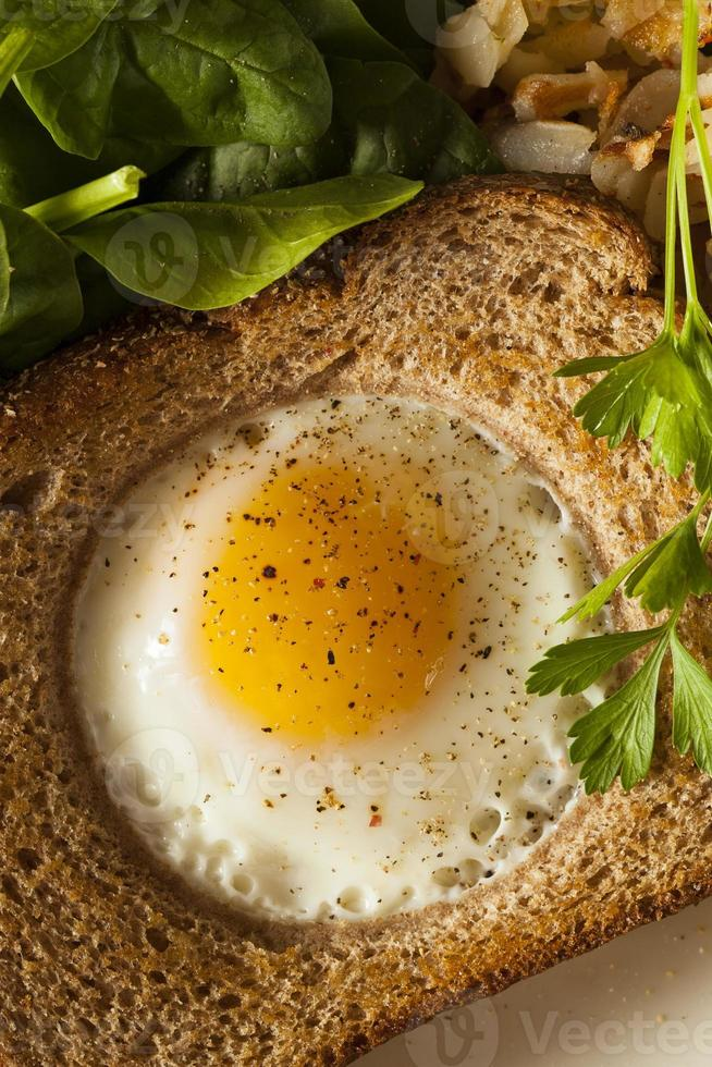Egg in a Basket photo