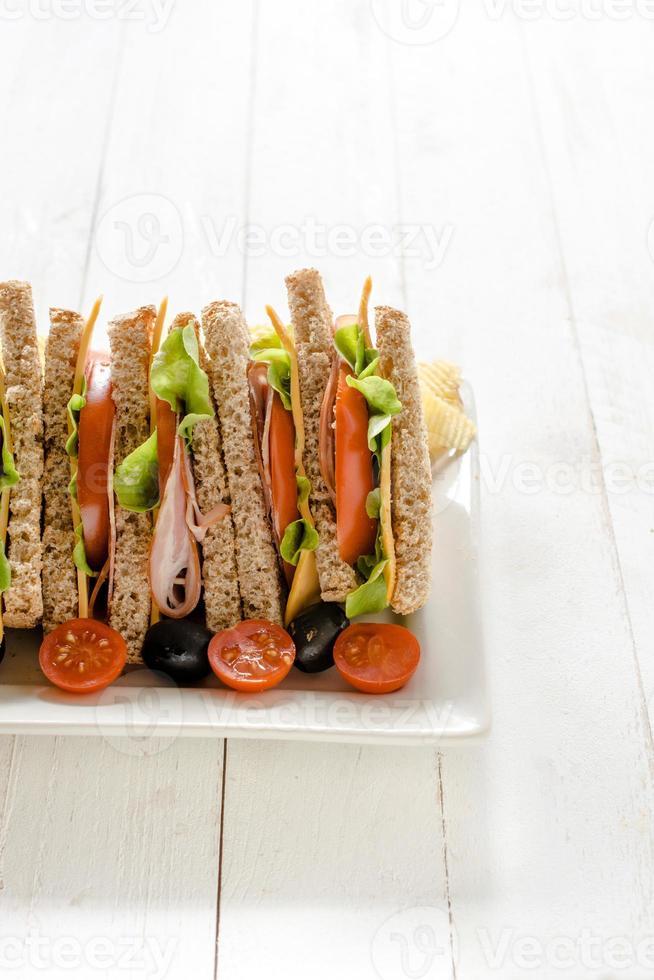 Sandwich time photo