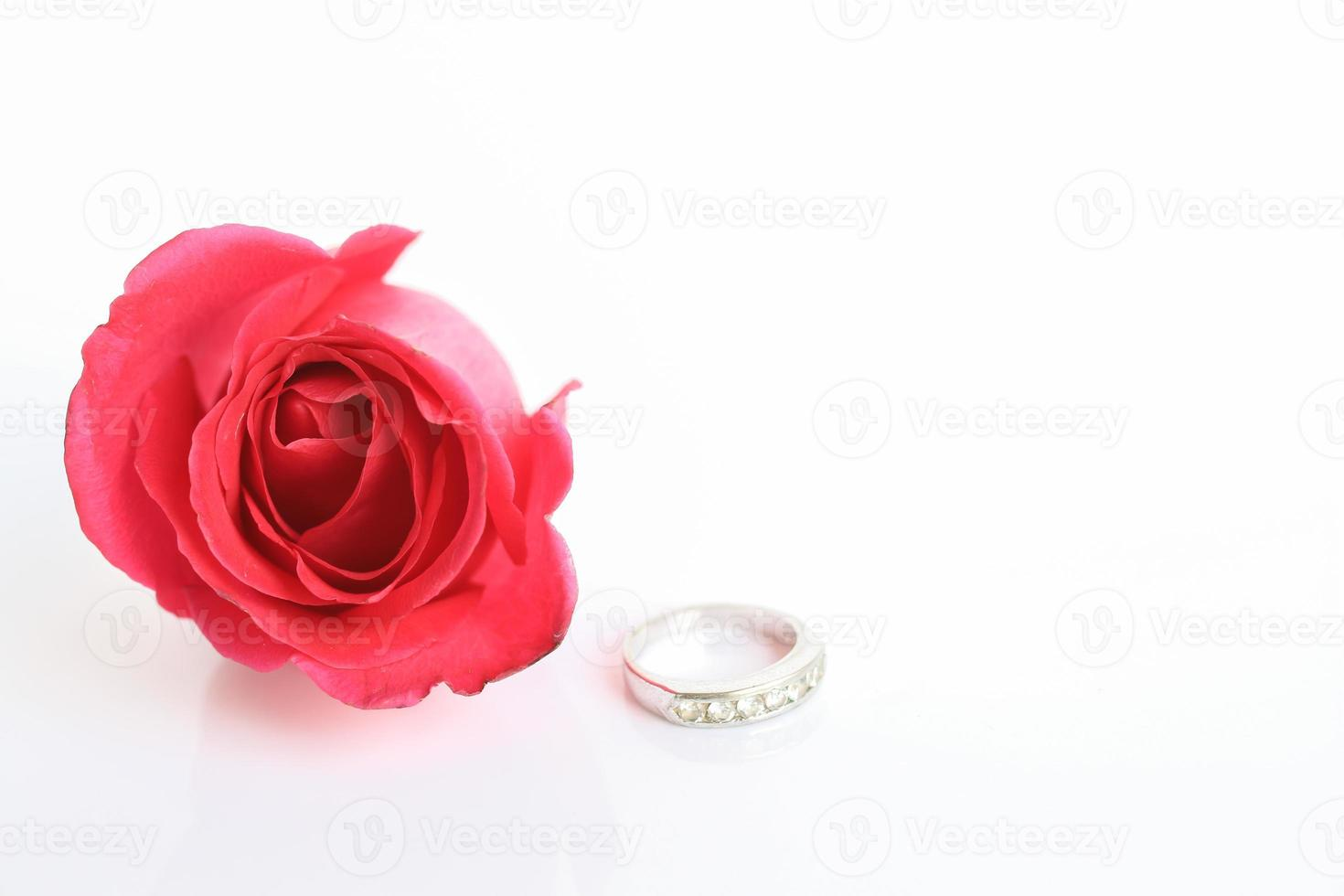 Red rose with ring photo