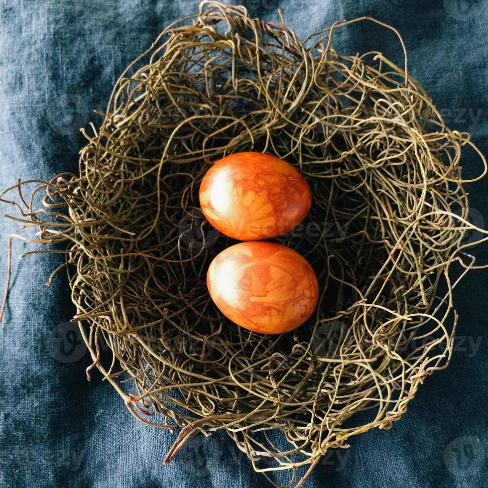 Traditionally dyed eggs for Easter in bird's nest photo