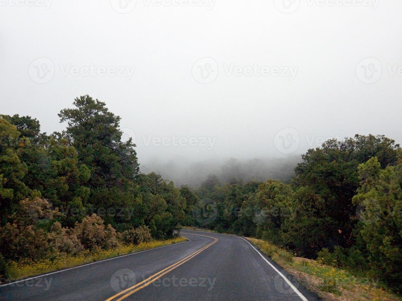 Foggy road in Arizona photo