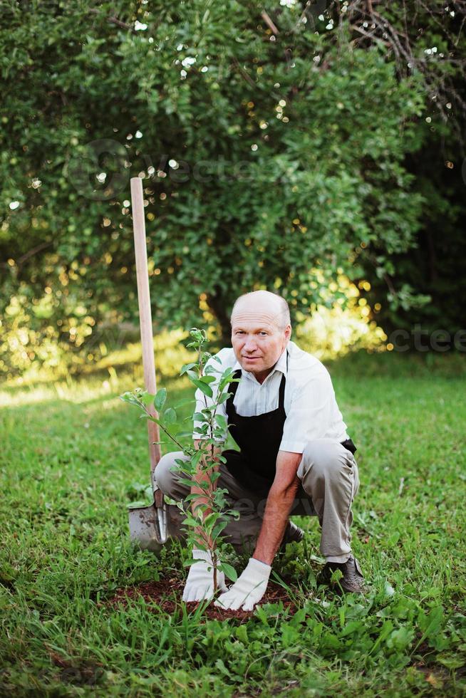 Gardener. photo