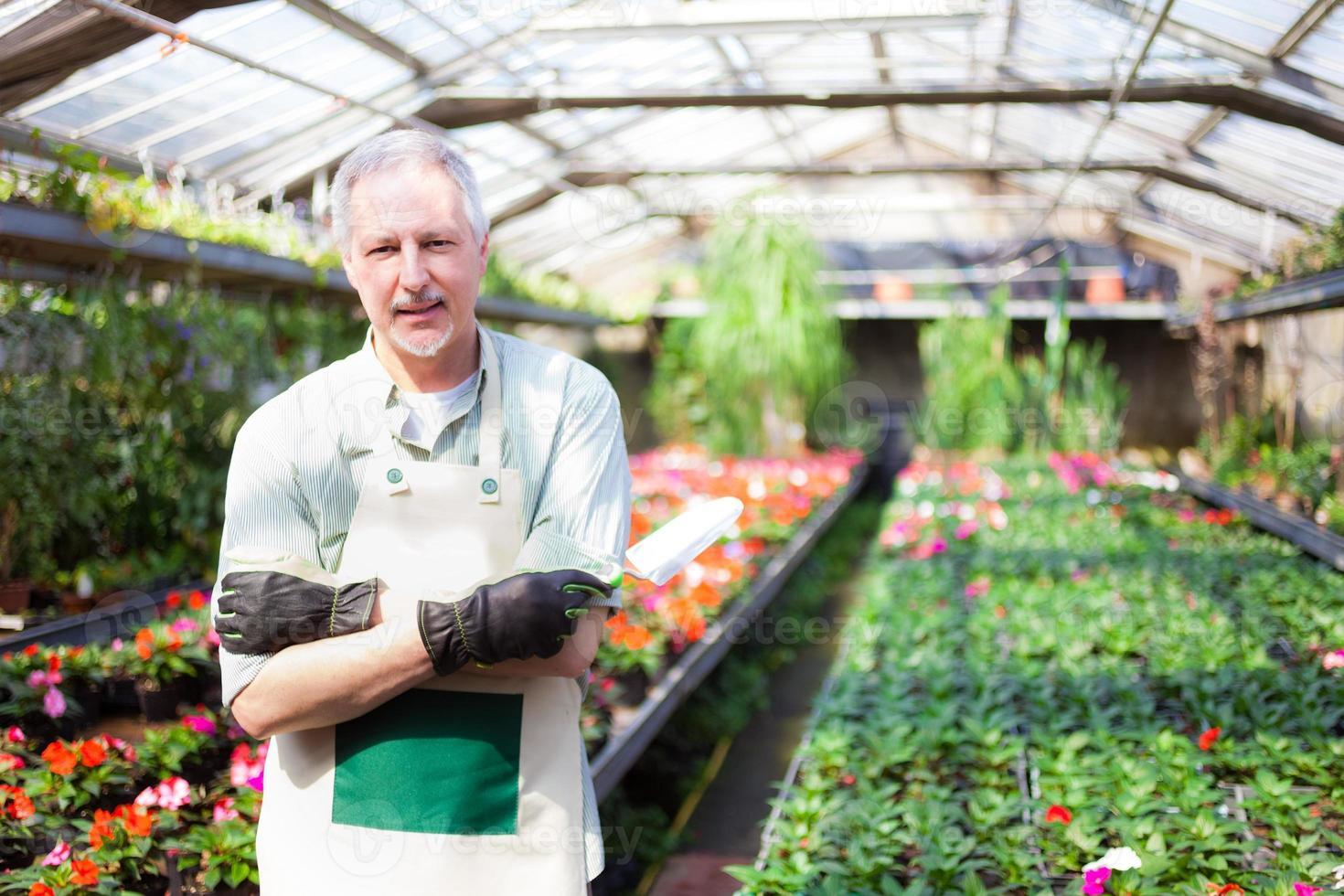 Greenhouse worker photo