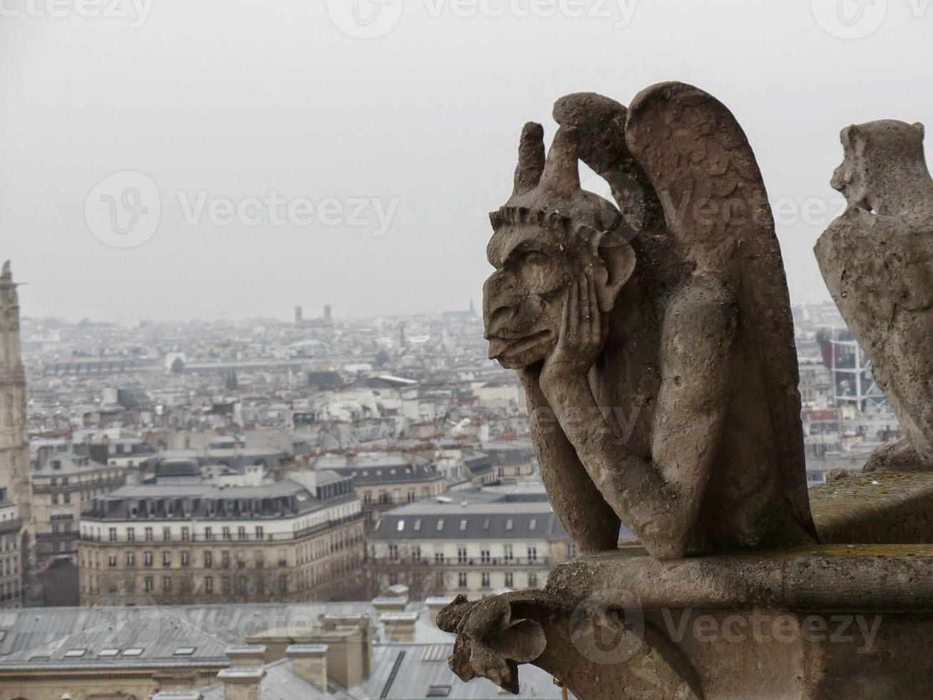 Notre Dame Cathedral Gargoyle photo
