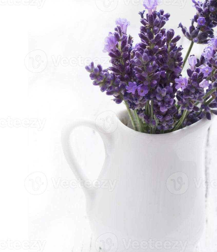 lavender in vase photo
