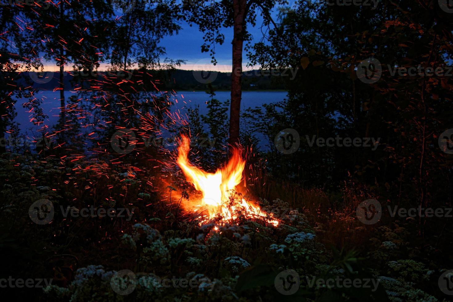 Firebird shape bonfire photo