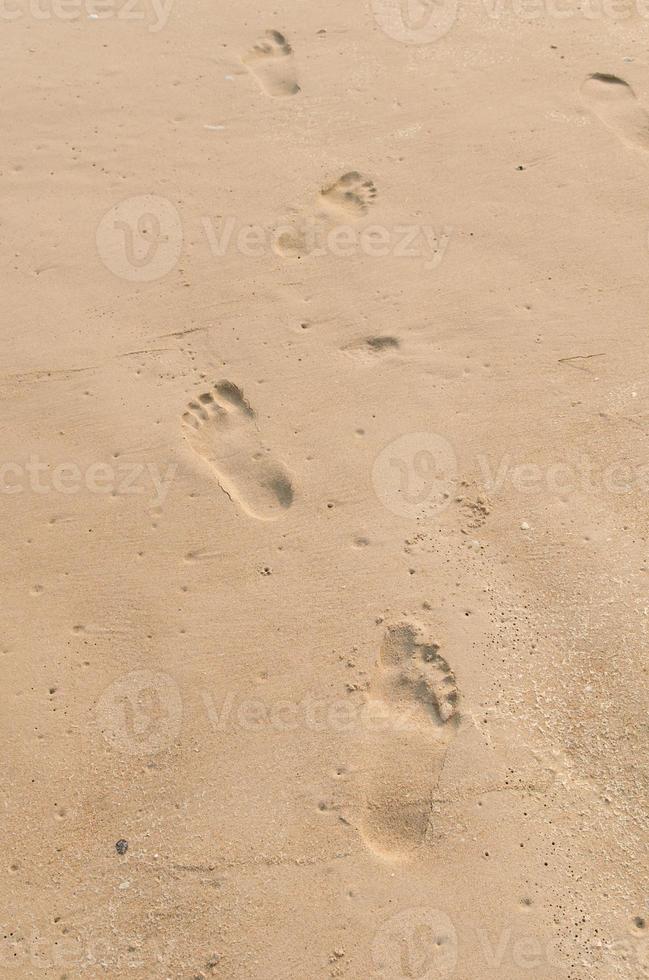 Human footprints on the beach sand photo