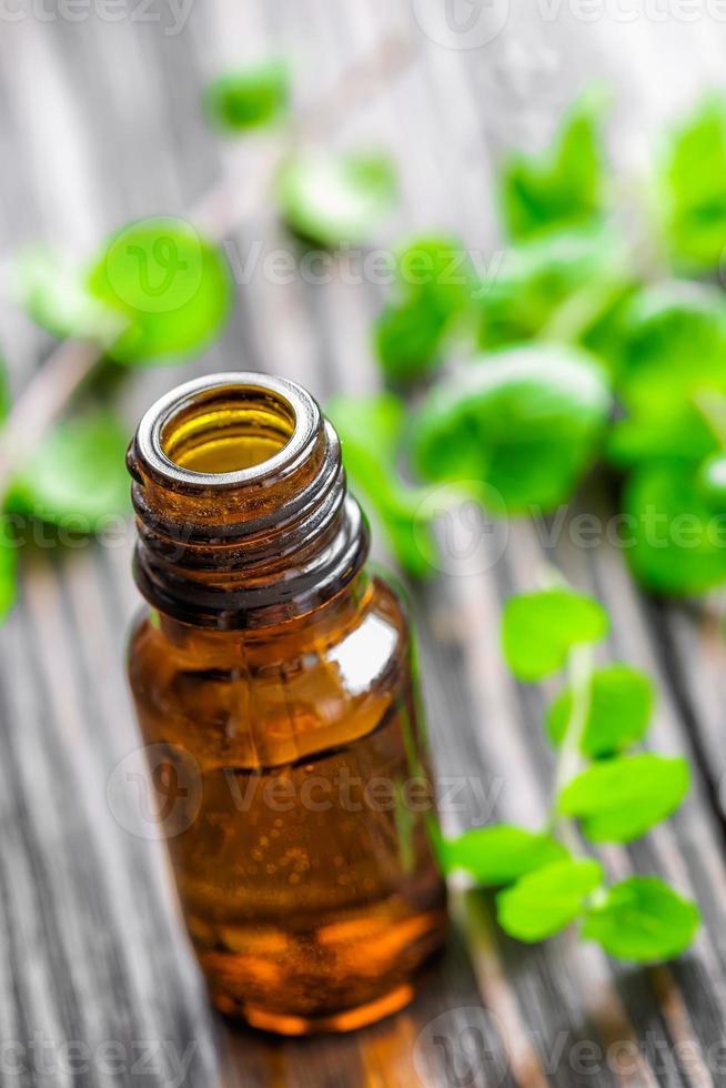 Mint oil photo
