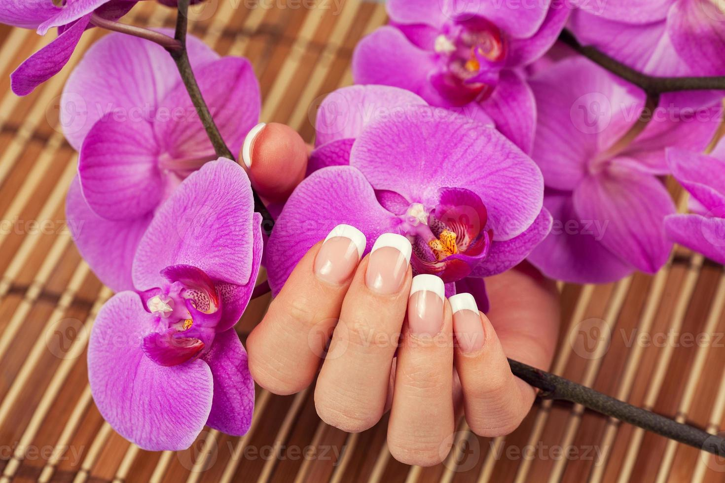Female hand with french manicure holdinf orhird flowers photo