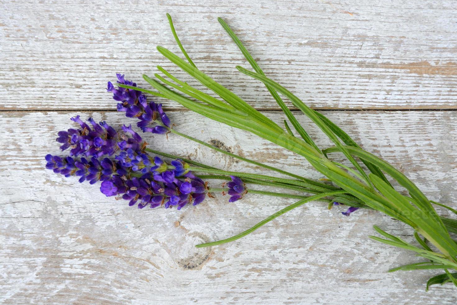 relajantes flores de lavanda perfumadas en viejo fondo de madera blanco vacío foto