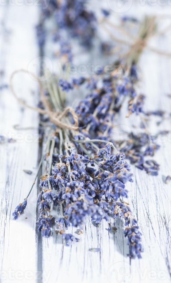 Dried Lavender photo