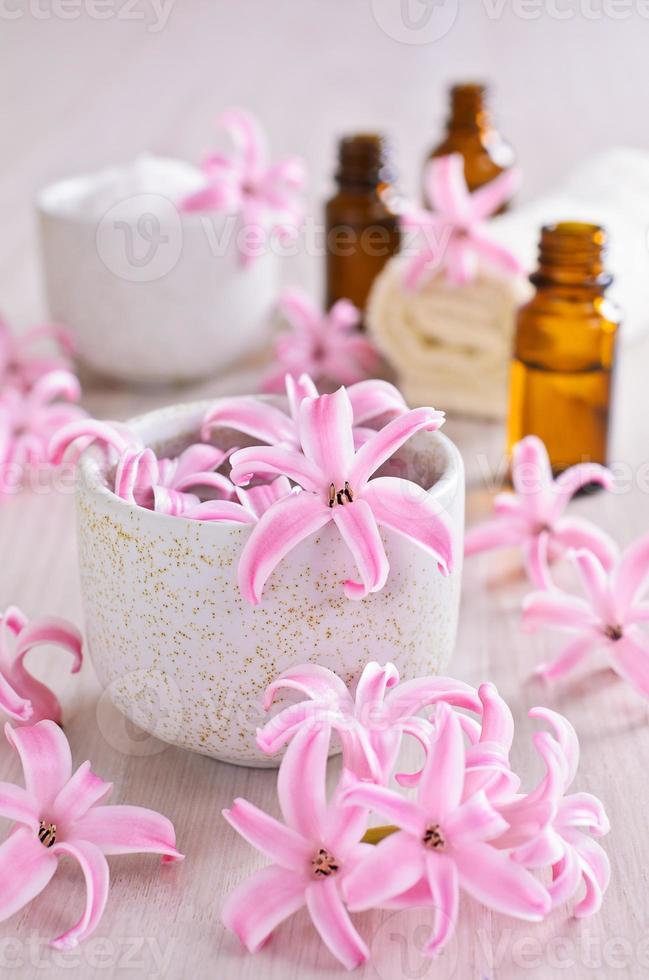 flores de jacinto rosa. spa. foto