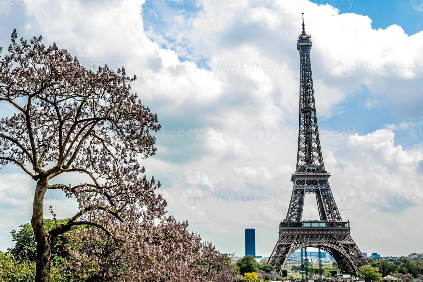 Eiffel Paris photo