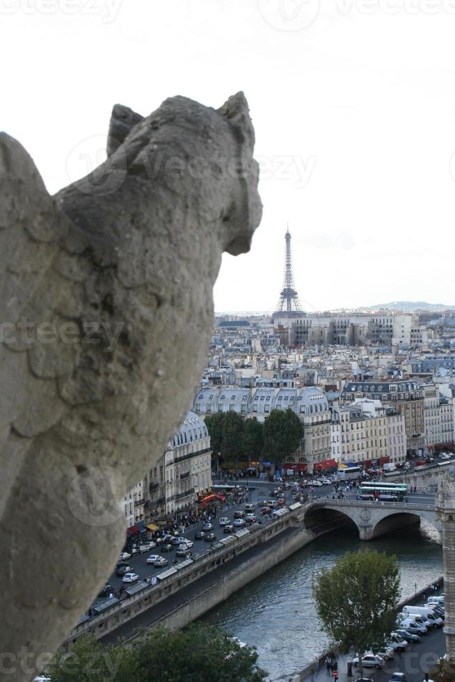 Gárgola, la catedral de Notre Dame en París, Francia. foto