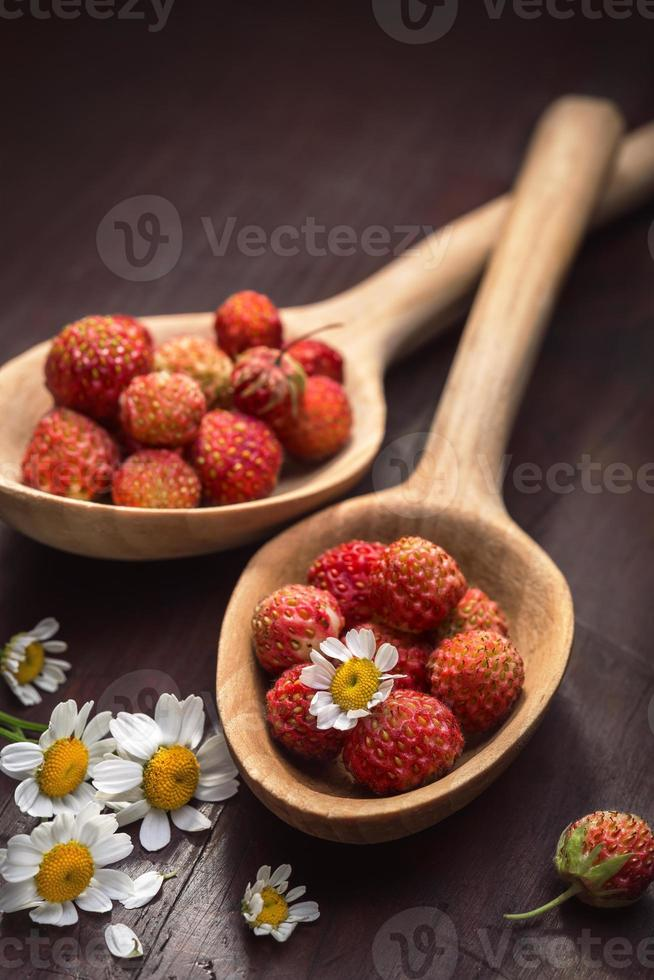 strawberry in a wooden spoon and flowers of camomile photo
