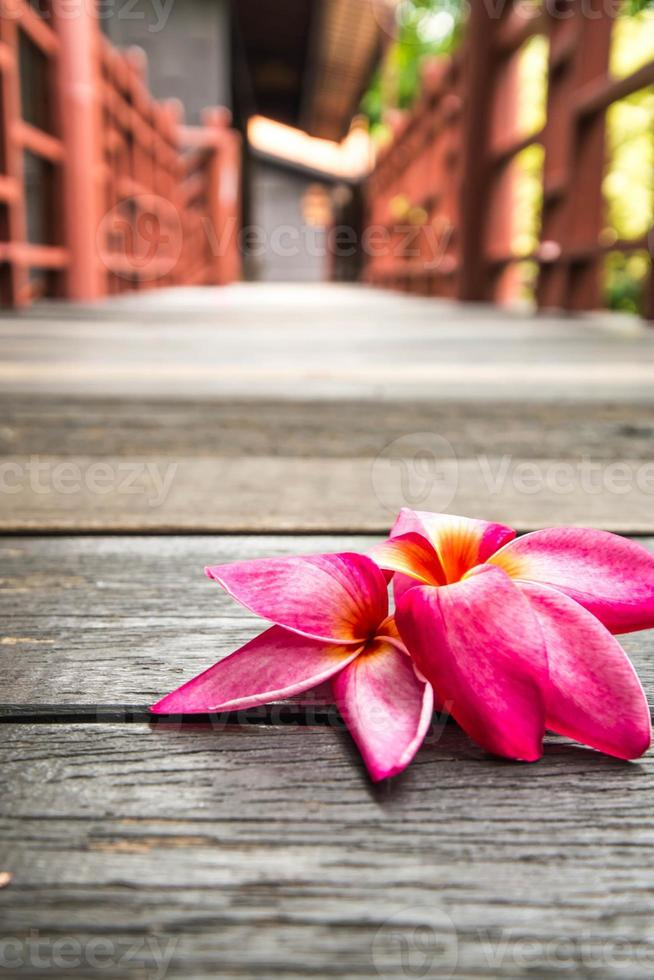Plumeria rosa en concepto de piso de madera de relax y spa foto