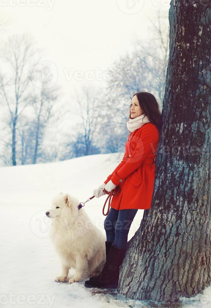 mujer propietaria y perro samoyedo blanco cerca del árbol en invierno foto
