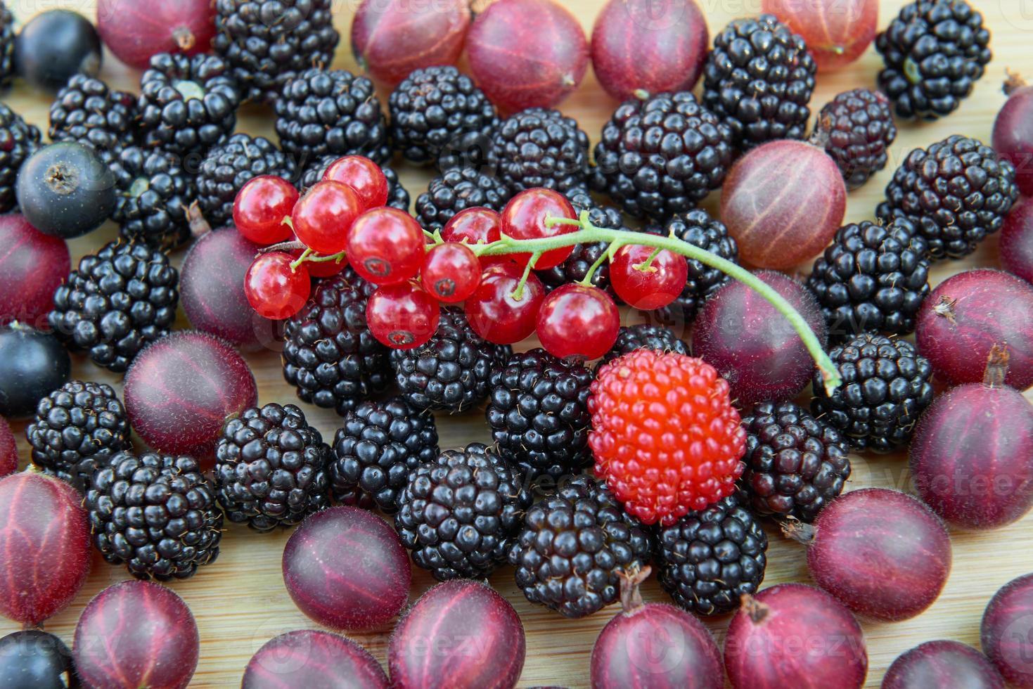 Blackberries, gooseberries, redcurrants, blackcurrants on a wooden table photo