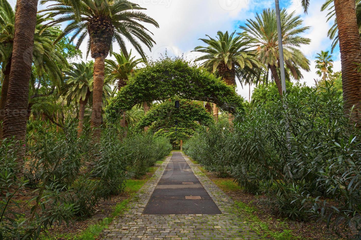 jardín de santa cruz foto