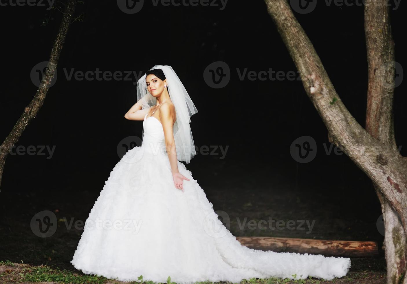Beautiful caucasian brunette bride . photo